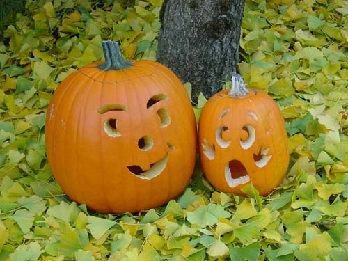 BignLilSisterPumpkins.jpg