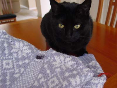KnittingInspectorPonders.jpg