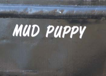 MudPuppy.jpg