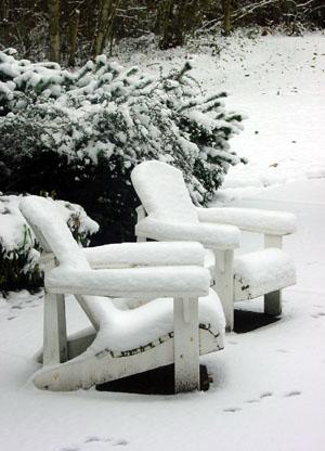 Snowvember.jpg