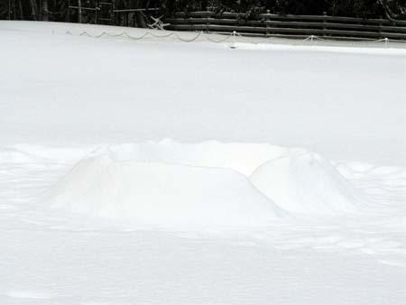 snowfort.jpg